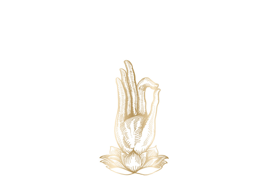 BP My Nirvana_logo_1080x540.png